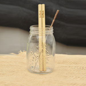two Bamboo Straw Set
