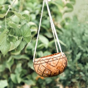 Coconut Hanging Planter