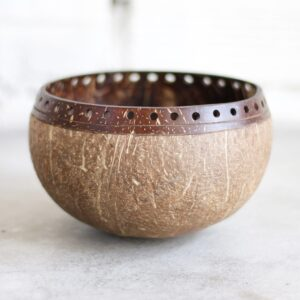 Jumbo Desigmer Coconut Bowls made from real coconuts